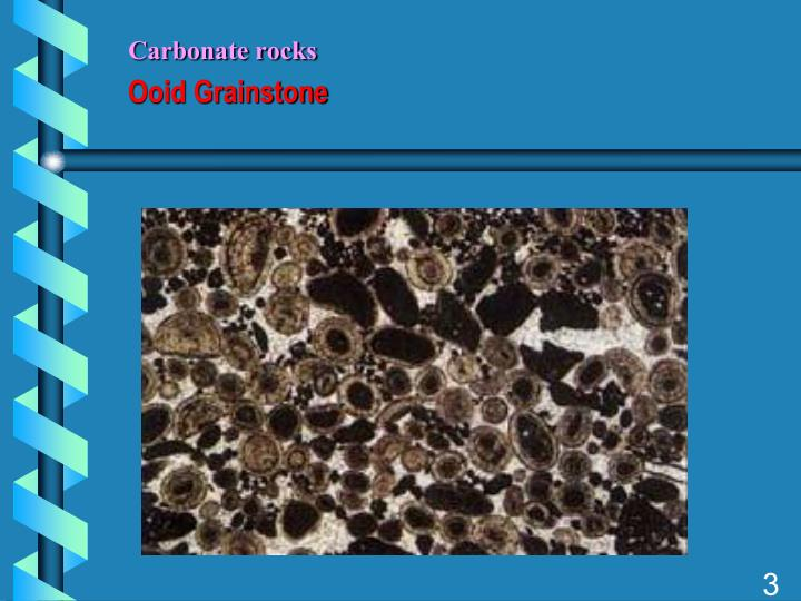 Carbonate rocks ooid grainstone