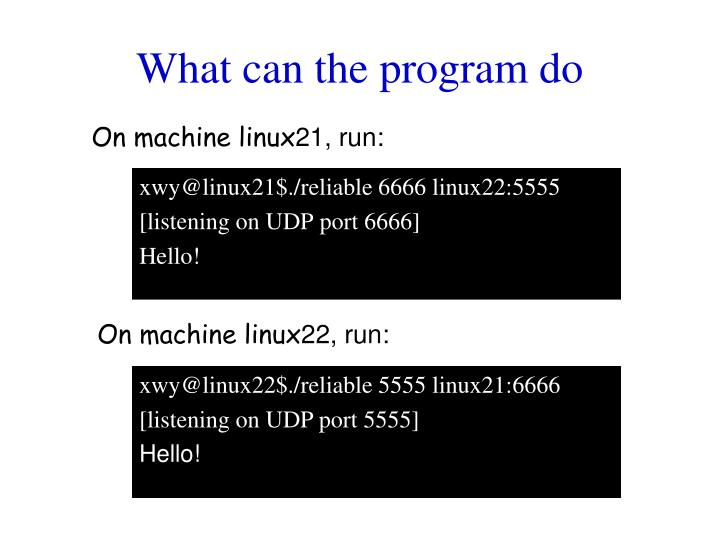 What can the program do