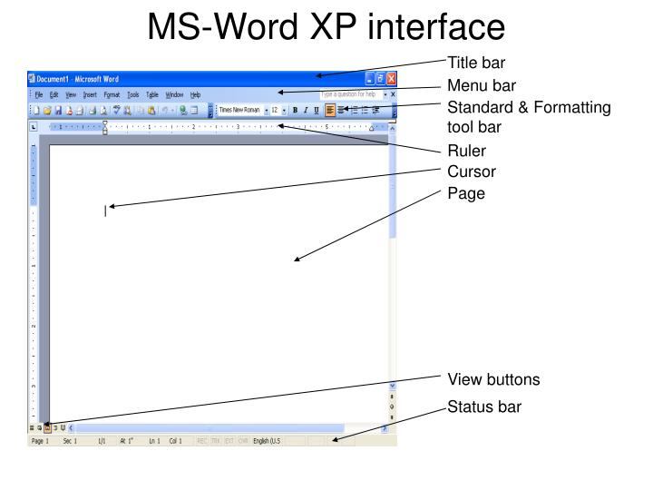 MS-Word XP interface