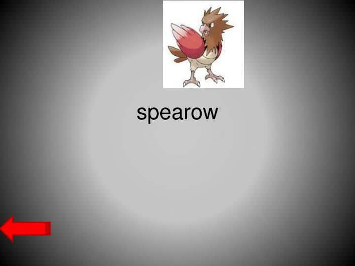 spearow