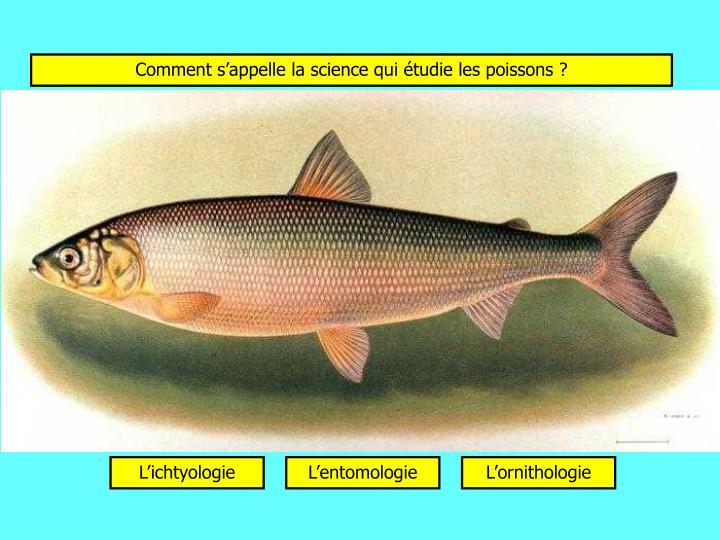 Comment s'appelle la science qui étudie les poissons ?