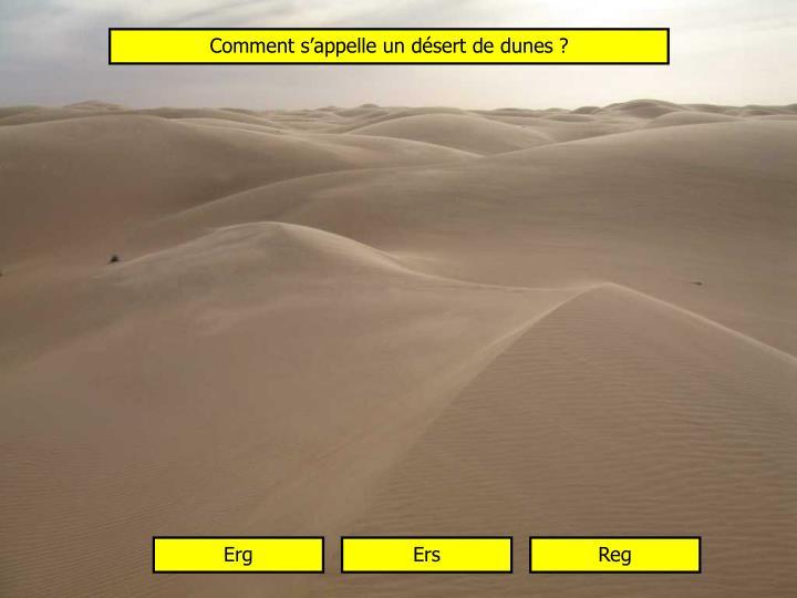 Comment s'appelle un désert de dunes ?