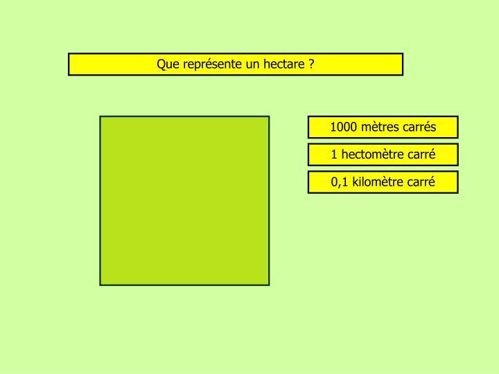 Que représente un hectare ?