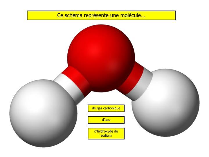 Ce schéma représente une molécule…