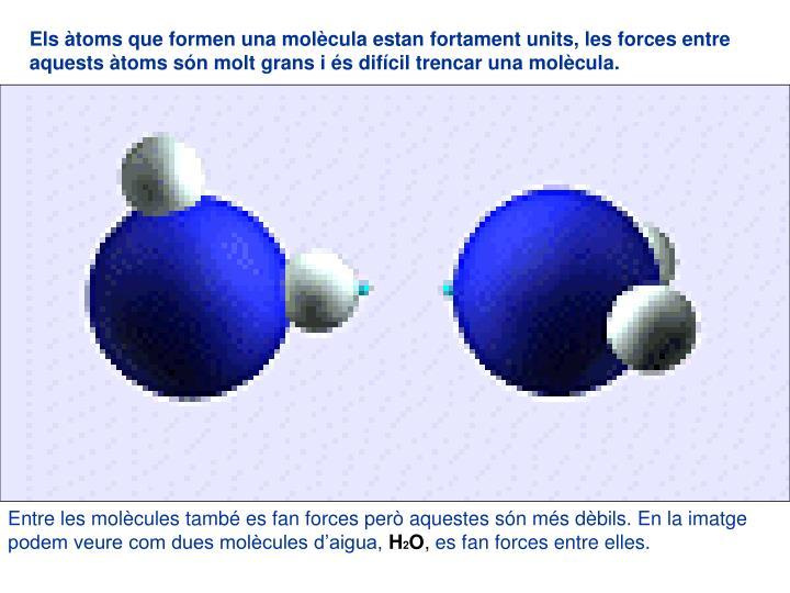 Els àtoms que formen una molècula estan fortament units, les forces entre aquests àtoms són molt grans i és difícil trencar una molècula.
