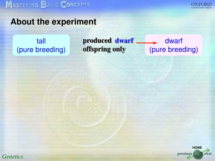 About the experiment