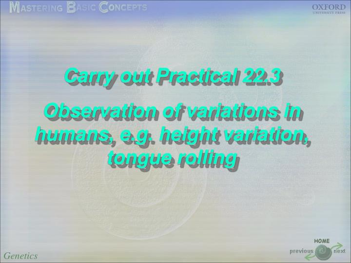 Carry out Practical 22.3
