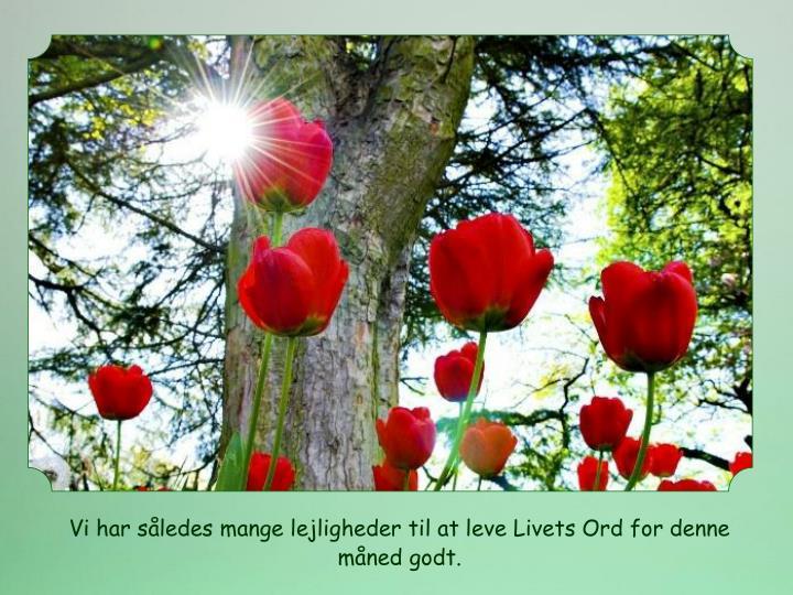 Vi har således mange lejligheder til at leve Livets Ord for denne måned godt.