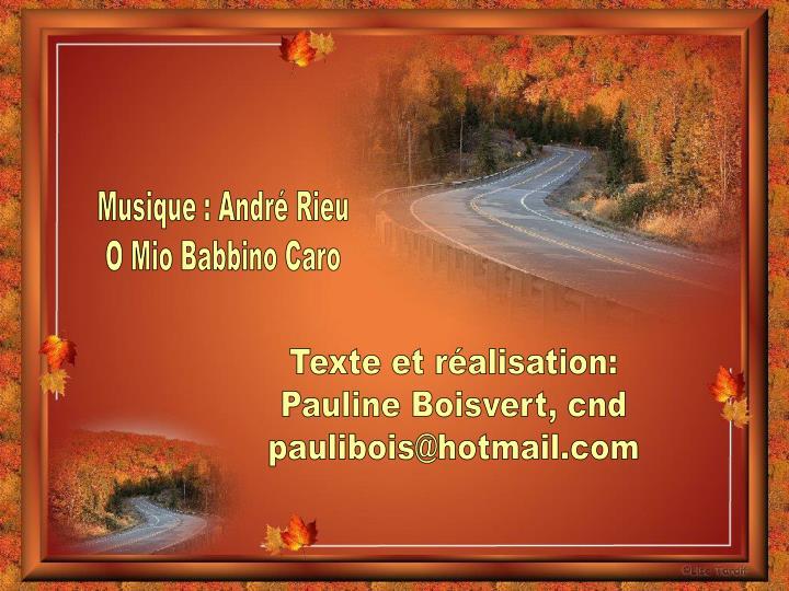 Musique : André Rieu