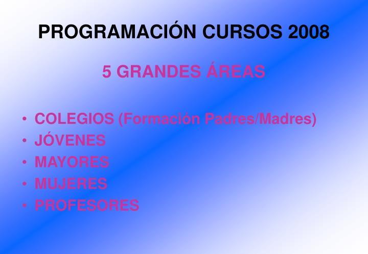 PROGRAMACIÓN CURSOS 2008