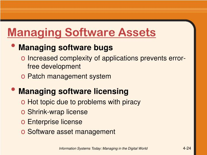 Managing Software Assets