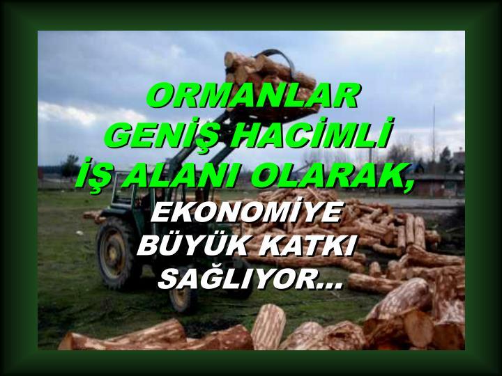 ORMANLAR