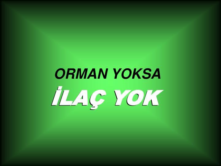 ORMAN YOKSA