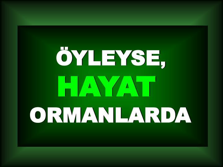 ÖYLEYSE