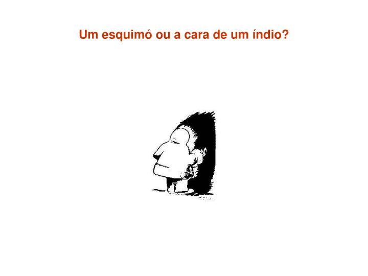 Um esquimó ou a cara de um índio?