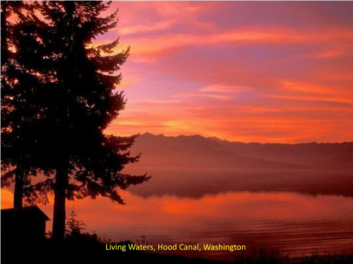 Living Waters, Hood Canal, Washington