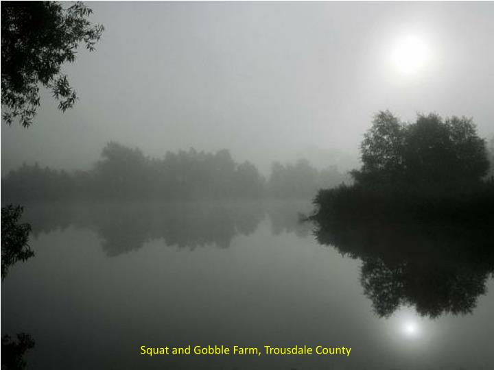 Squat and Gobble Farm, Trousdale County