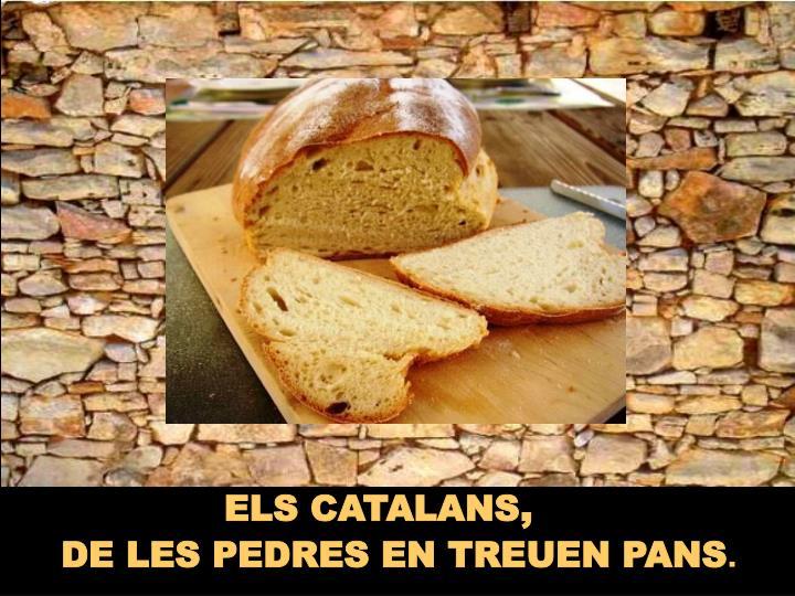 ELS CATALANS
