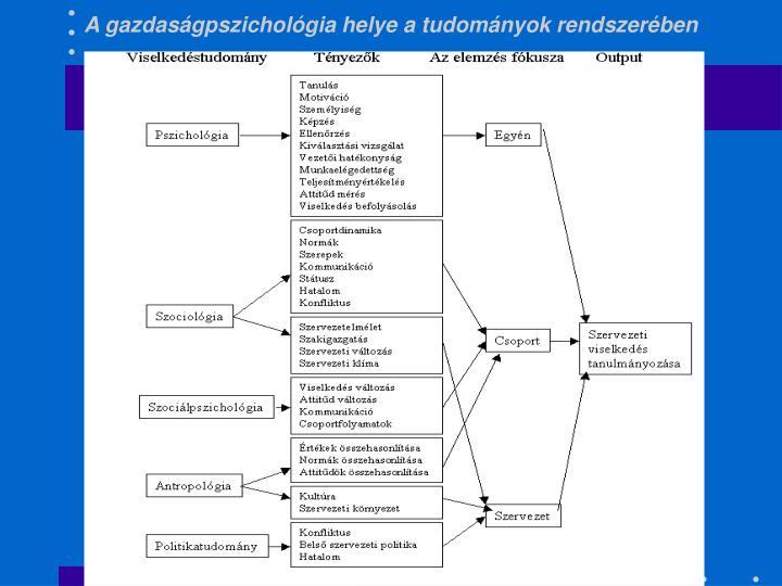 A gazdaságpszichológia helye a tudományok rendszerében