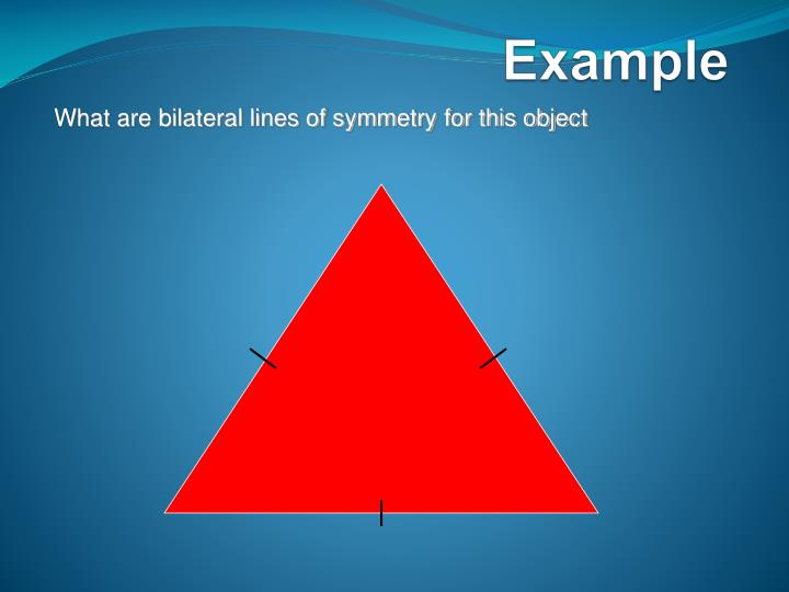 What are bilateral lines of symmetry for this object