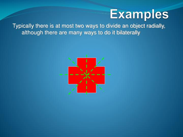 Typically there is at most two ways to divide an object radially, although there are many ways to do it bilaterally