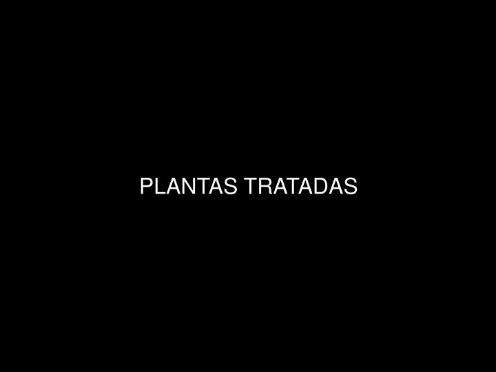 PLANTAS TRATADAS