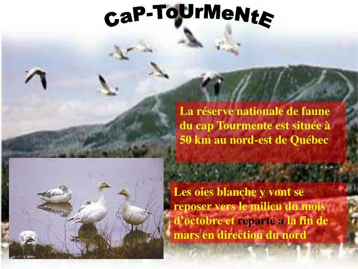 CaP-ToUrMeNtE