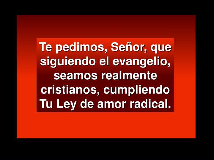 Te pedimos, Señor, que siguiendo el evangelio, seamos realmente cristianos, cumpliendo  Tu Ley de amor radical.