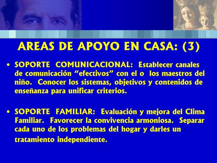 AREAS DE APOYO EN CASA: (3)