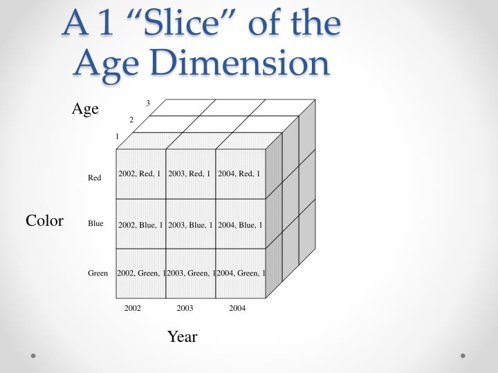 "A 1 ""Slice"" of the Age Dimension"