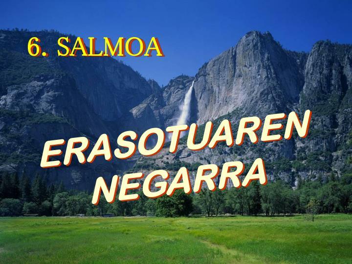 6. SALMOA