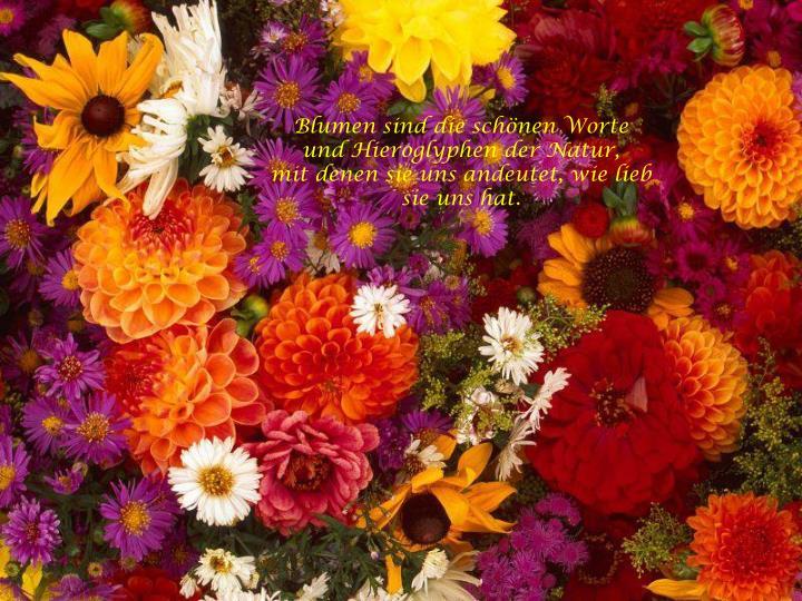 Blumen sind die schönen Worte und Hieroglyphen der Natur,