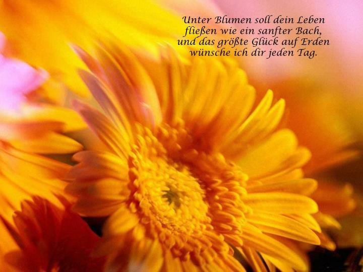 Unter Blumen soll dein Leben