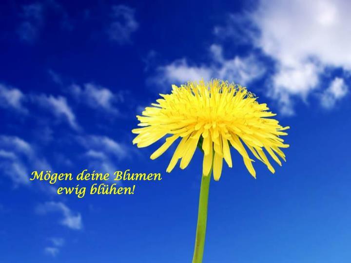 Mögen deine Blumen ewig blühen!