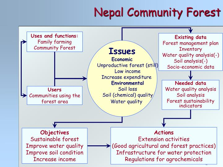 Nepal Community Forest