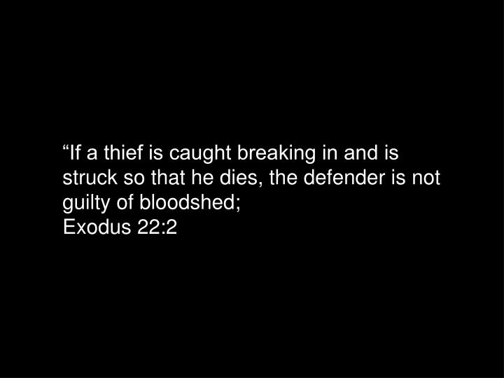 """If a thief is caught breaking in and is struck so that he dies, the defender is not guilty of bloodshed;"