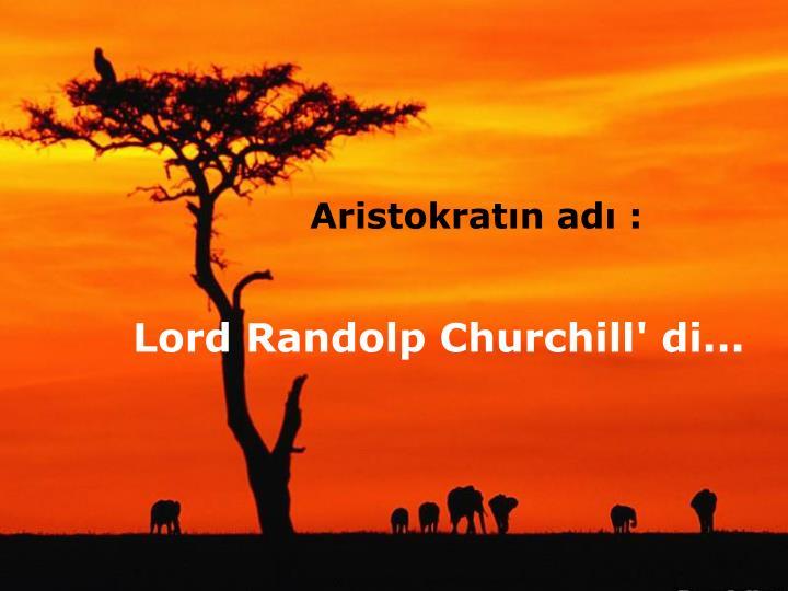 Aristokratın adı :