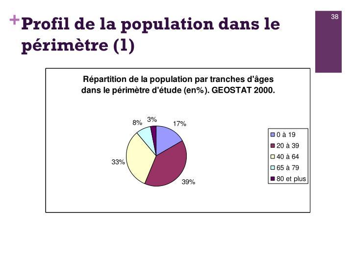 Profil de la population dans le périmètre (1)
