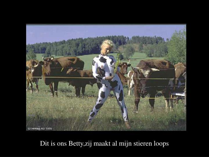Dit is ons Betty,zij maakt al mijn stieren loops
