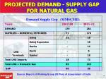 projected demand supply gap for natural gas