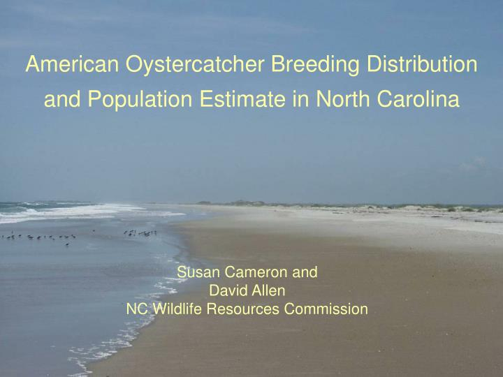 American oystercatcher breeding distribution and population estimate in north carolina