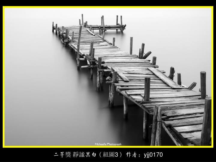 二等獎 靜謐黑白(組圖