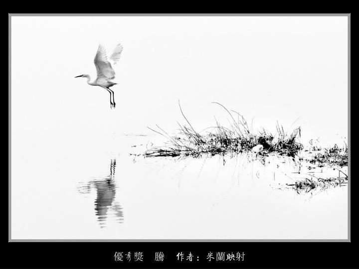 優秀獎    騰    作者:米蘭映射