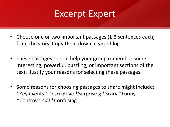 Excerpt Expert