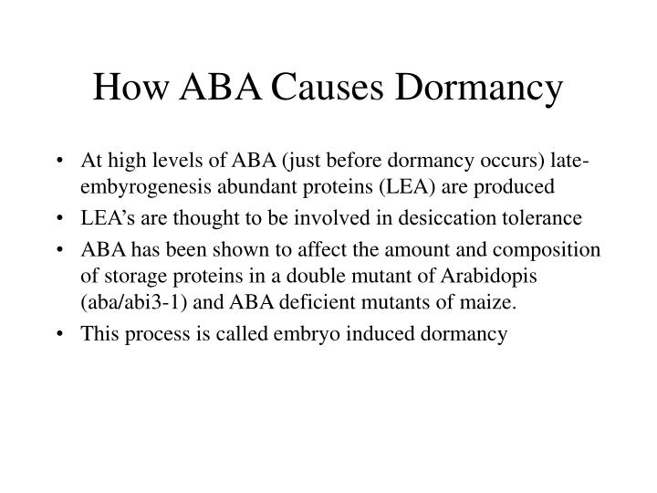 How ABA Causes Dormancy