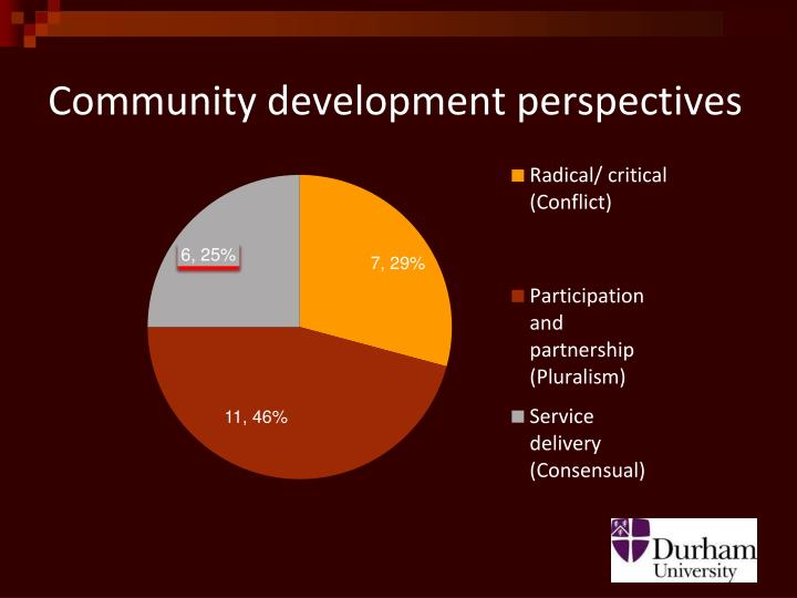 Community development perspectives
