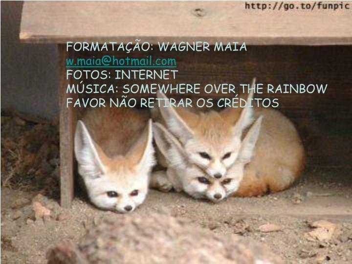 FORMATAÇÃO: WAGNER MAIA