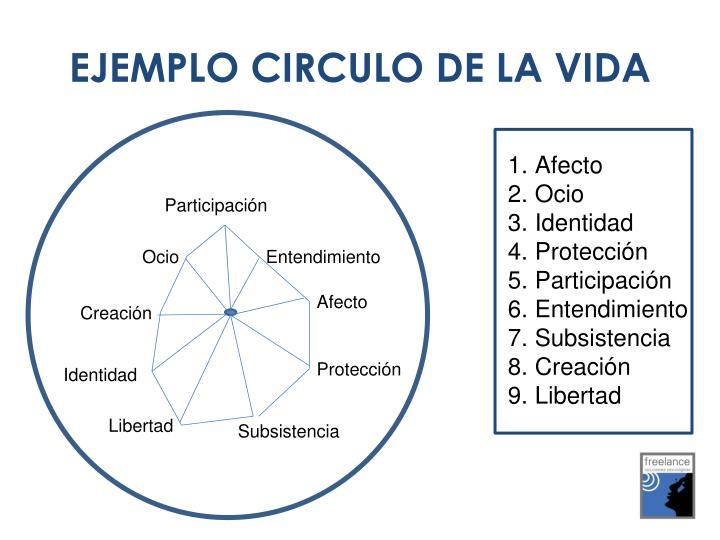 EJEMPLO CIRCULO DE LA VIDA
