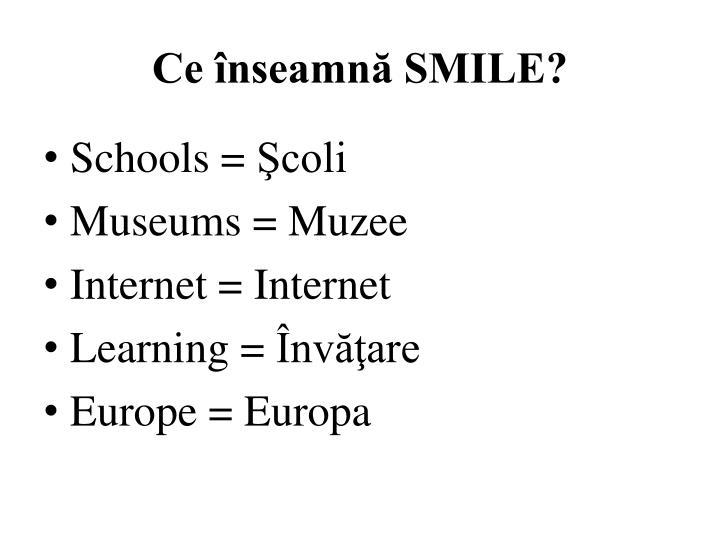 Ce înseamnă SMILE?