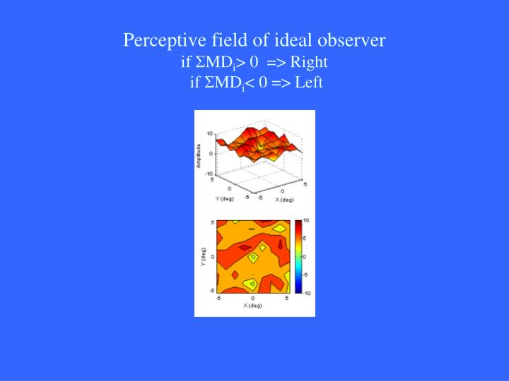 Perceptive field of ideal observer